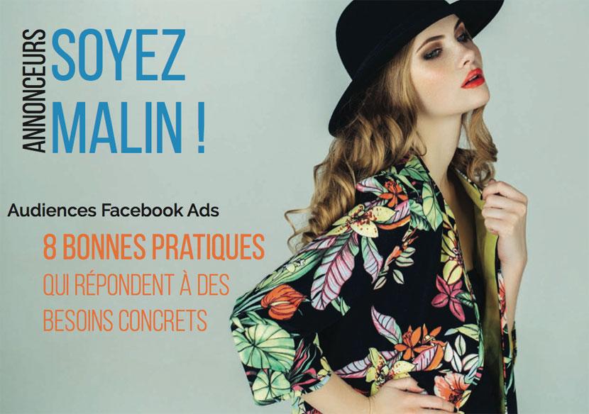 audience facebook ads